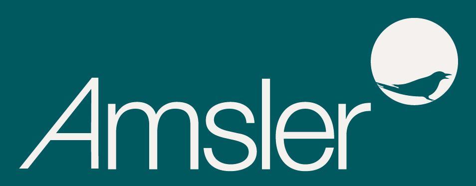 Logo-Amsler